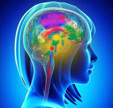 Master in psicosomatica cervello